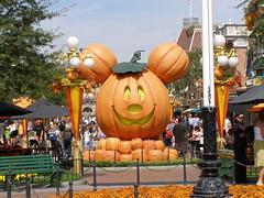 Sept Disney (9)
