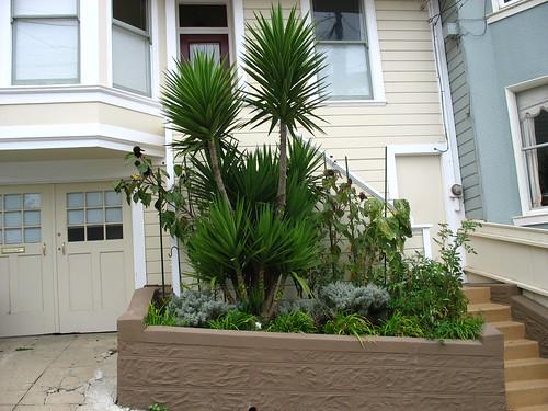 5 sideyard