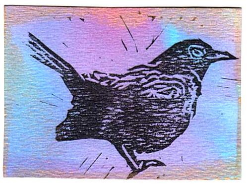 crow3 001