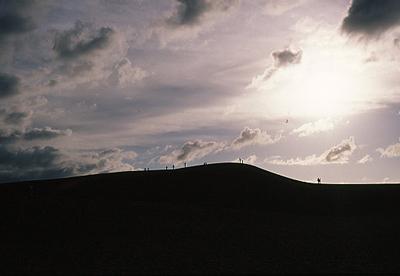 the tottori-dune