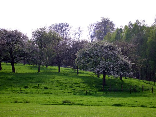 Parc: Domaine Solvay