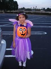 My Plum Fairy