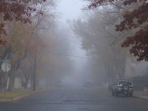 2006-11-04 007
