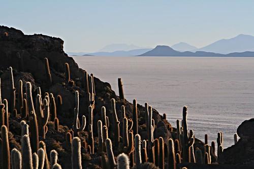 مناظر خلابة لبحيرة الملح ببوليفيا 304077622_26b1b3c341