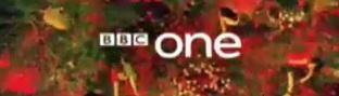 bbcringaroses