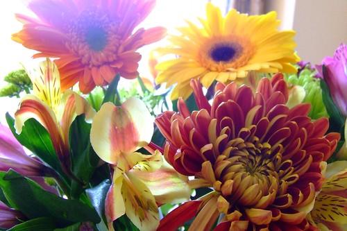 ah flowers