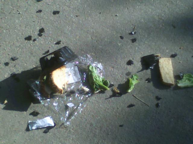 Sandwich after ravens