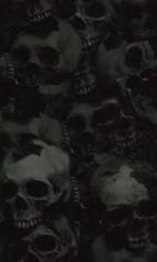skullbg1-10