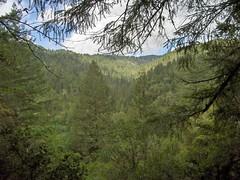 Angelo Reserve