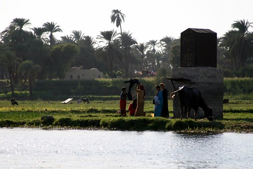 Along the Banks of the Nile