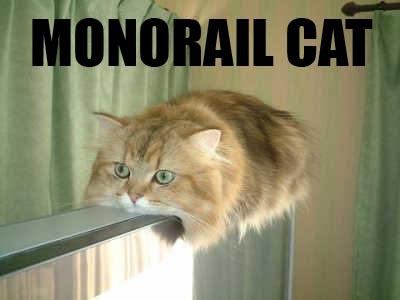 MonorailCat