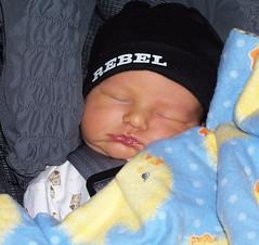 newborn much Dax