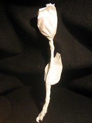 Paper flower: second try
