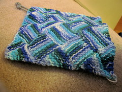 SP9 dishcloth