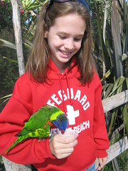 Micaela says hello to her new lorikeet friend.