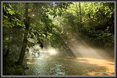Morning light on the creek photo by blair4bears