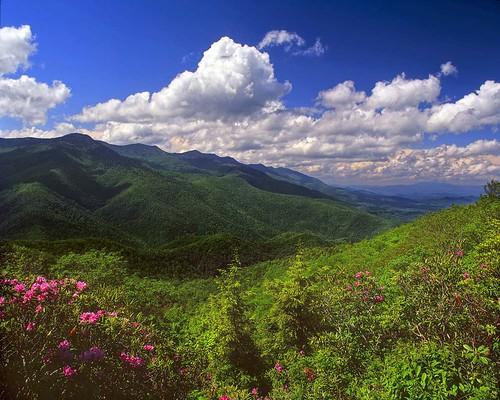 Mt mitchel webcam