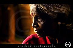 Black gold photo by ayashok photography