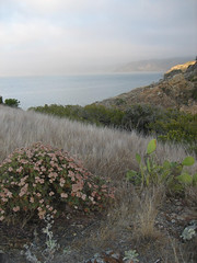 The view from atop Santa Cruz Island, Channel Islands, California