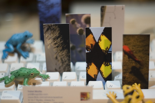 mini-exhibition by moo minicards™