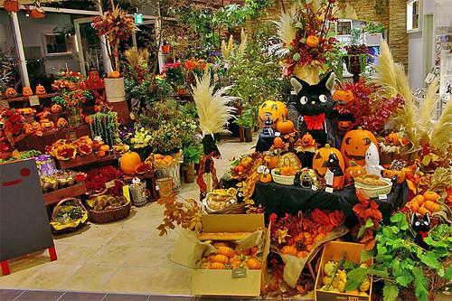 Donguri Garden Halloween
