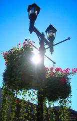 Black Lamp, Blue Sky, Bright Sun