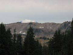 Mt Adams from Bootpath