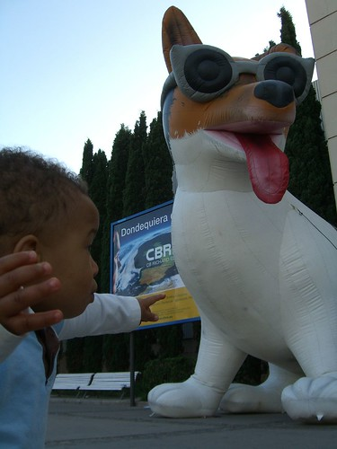 Z and the Giant Dog