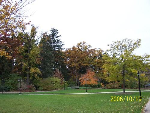 20061112 049