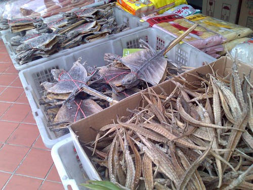 Dried seahorses, lizards, and other treats