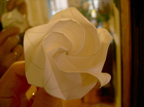 O3 Rose, 0.4