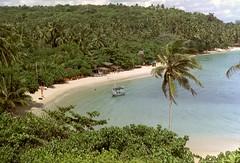 Kan ik veilig naar Sri Lanka reizen?