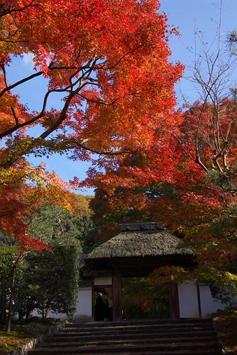 Anrakuji temple (安楽寺)