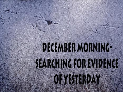 decembermorning