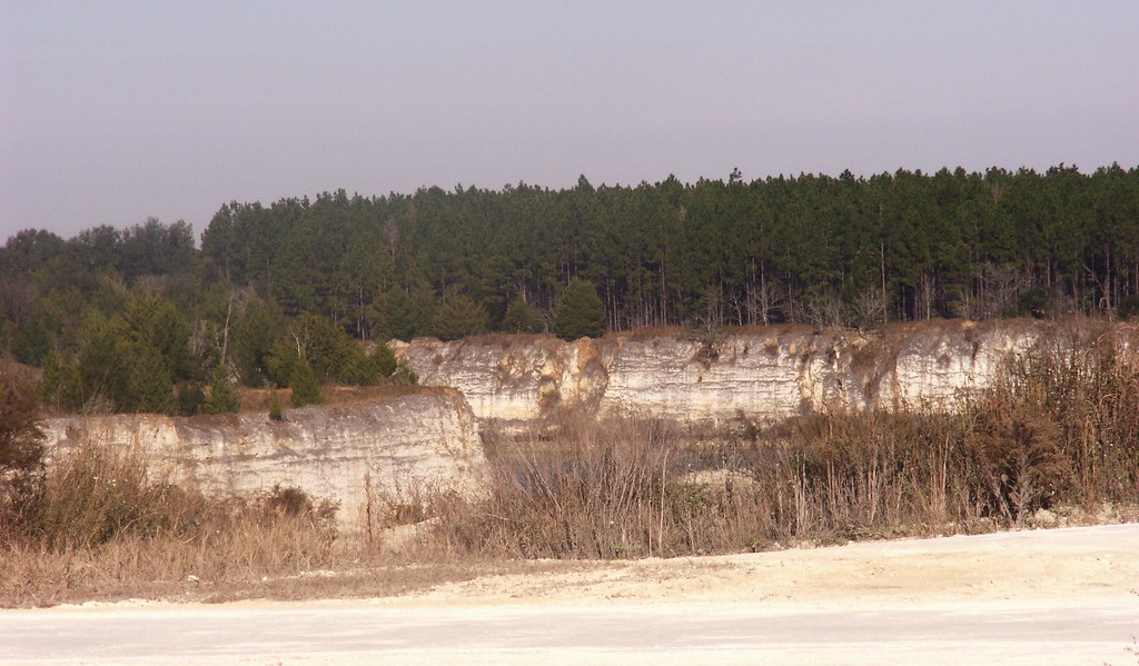 Limestone Quarry in Alachua County, Florida, View 1