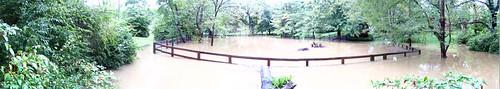 Back Yard Flood 06