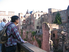 Looking at the castle tower