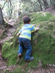 Climbing moss-covered rocks