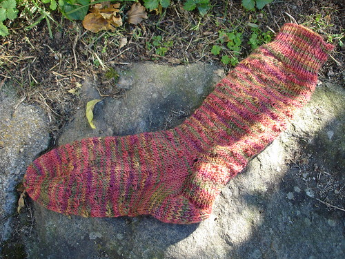 wildflower sock #1