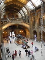 Dinosaur Hall de dia ©