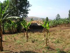 Burundi - Ruyigi FieldVisits 003