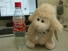 Baa and Coca Cola