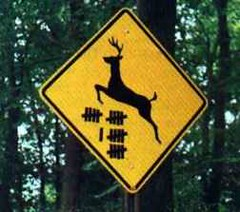 Redneck deer crossing