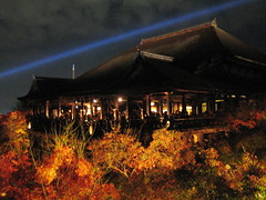 Kiyomizudera at night with a view of the deck and fall colored leaves