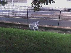 Owner of a Lonely Cart