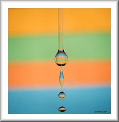 Waterdrops: Shapes and colors photo by Asadbabil (super busy)