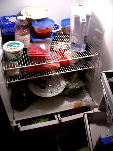 female fridge