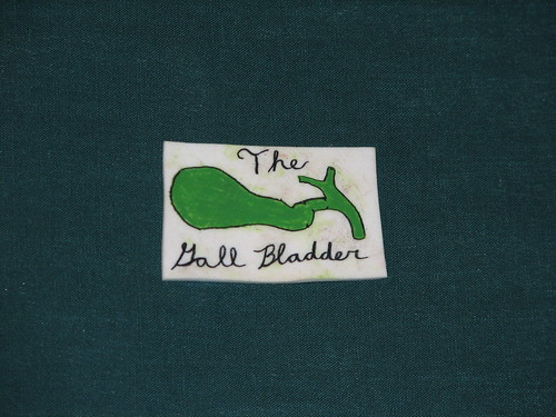 Shrinky-dink: The Gall Bladder
