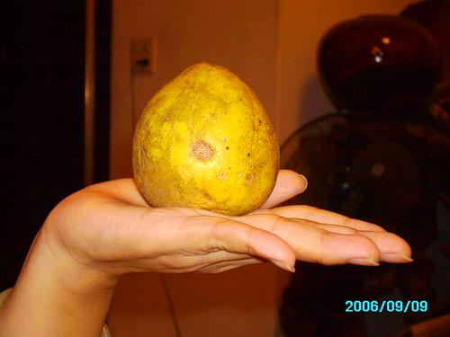 好小的柚子