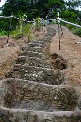 Ladder3